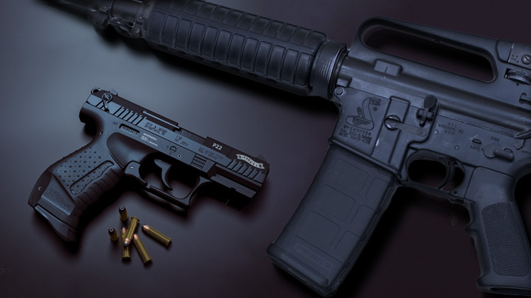Firearms Sealed Bid Auction