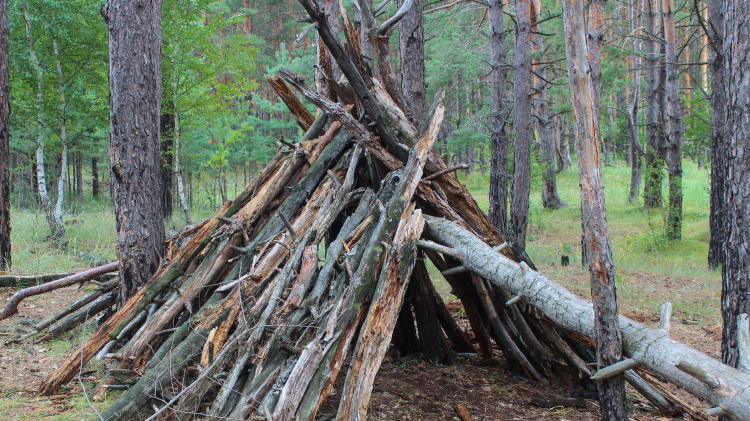 Backcountry Survival Skills - Shelter Building