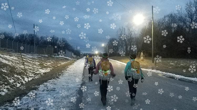 10,000 Steps: Winter Suburban Hiking
