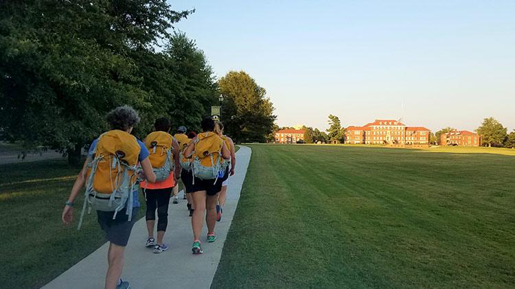 10,005 Steps: Summer Suburban Hiking